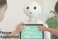 Pepper Educational Application1